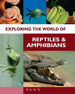 Exploring the World of Reptiles and Amphibians free download