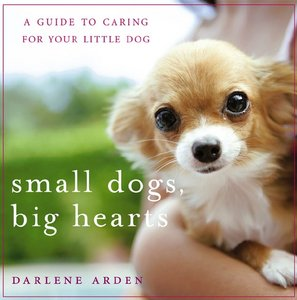Small Dogs, Big Hearts: A Guide to Caring for Your Little Dog, Revised Edition free download