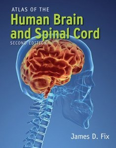 Atlas of the Human Brain and Spinal Cord, 2 Ed free download