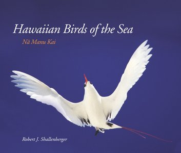 Hawaiian Birds of the Sea: N Manu Kai (Latitude 20 Books) free download
