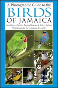 A Photographic Guide to the Birds of Jamaica free download
