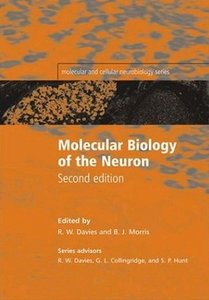 Molecular Biology of the Neuron, 2 Edition free download