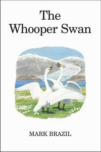 The Whooper Swan free download