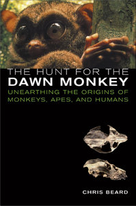 The Hunt for the Dawn Monkey: Unearthing the Origins of Monkeys, Apes, and Humans free download