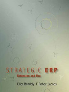 Strategic ERP: Extension and Use free download