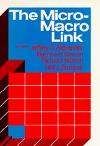 The Micro-Macro Link free download