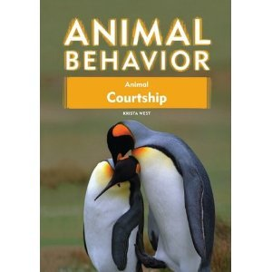 Animal Courtship free download