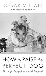 How to Raise the Perfect Dog: Through Puppyhood and Beyond free download