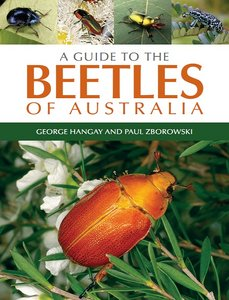 A Guide to the Beetles of Australia free download