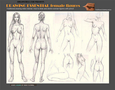 DRAWING ESSENTIAL: How to draw and sketch female figures with pencil free download