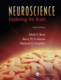 Neuroscience: Exploring the Brain free download