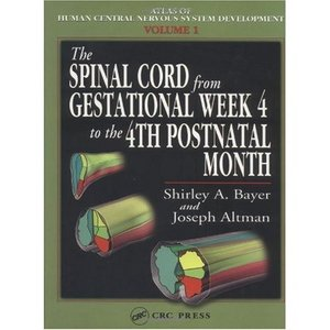 The Spinal Cord from Gestational Week 4 to the 4th Postnatal Month free download
