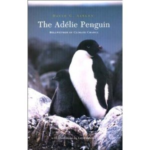 The Adelie Penguin free download