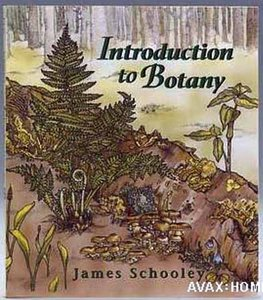 Introduction to Botany free download