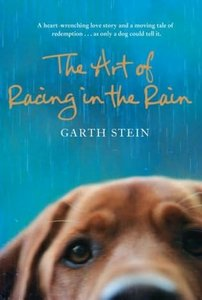 The Art of Racing in the Rain free download