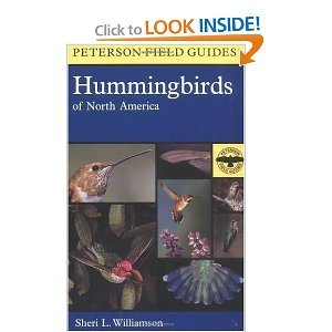 A Field Guide to Hummingbirds of North America free download