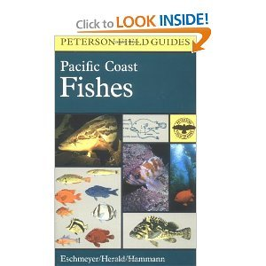A Field Guide to Pacific Coast Fishes : North America free download