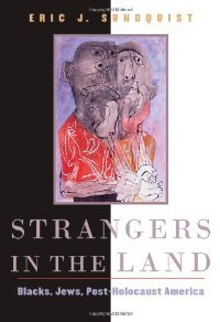 Strangers in the Land: Blacks, Jews, Post-Holocaust America free download