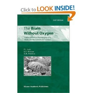 The Brain Without Oxygen: Causes of Failure - Physiological and Molecular Mechanisms for Survival free download