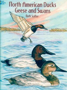 North American Ducks, Geese and Swans free download