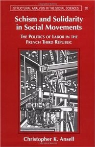 Schism and Solidarity in Social Movements: The Politics of Labor in the French Third Republic free download