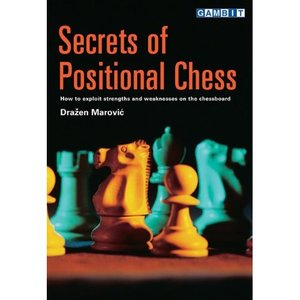 Secrets of Positional Chess free download