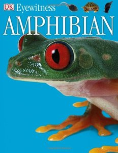 Amphibian (DK Eyewitness Books) free download