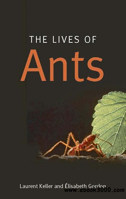 The Lives of Ants free download