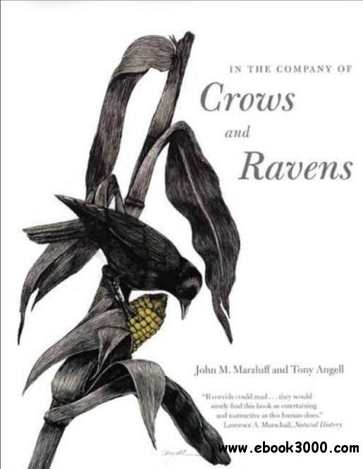In the Company of Crows and Ravens free download