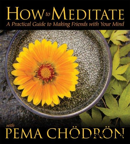 How to Meditate with Pema Chodron: A Practical Guide to Making Friends with Your Mind (Audiobook) free download