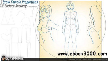 Digital Tutors - Drawing Female Proportions and Surface Anatomy free download