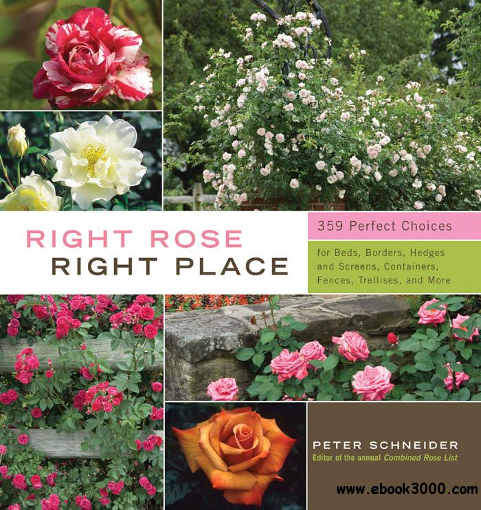 Right Rose, Right Place free download