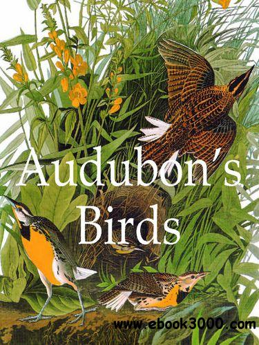 Audubon's Bird free download