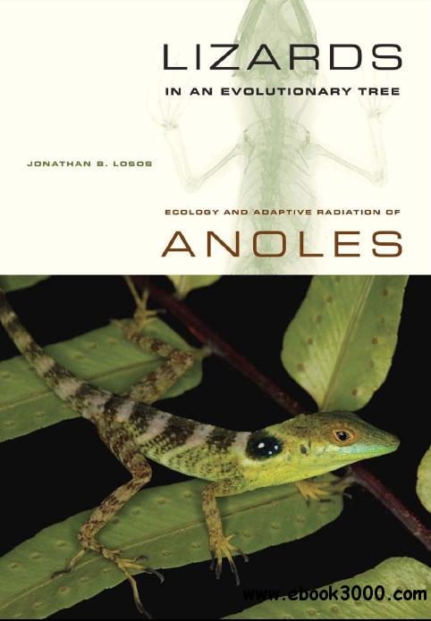 Lizards in an Evolutionary Tree: Ecology and Adaptive Radiation of Anoles free download