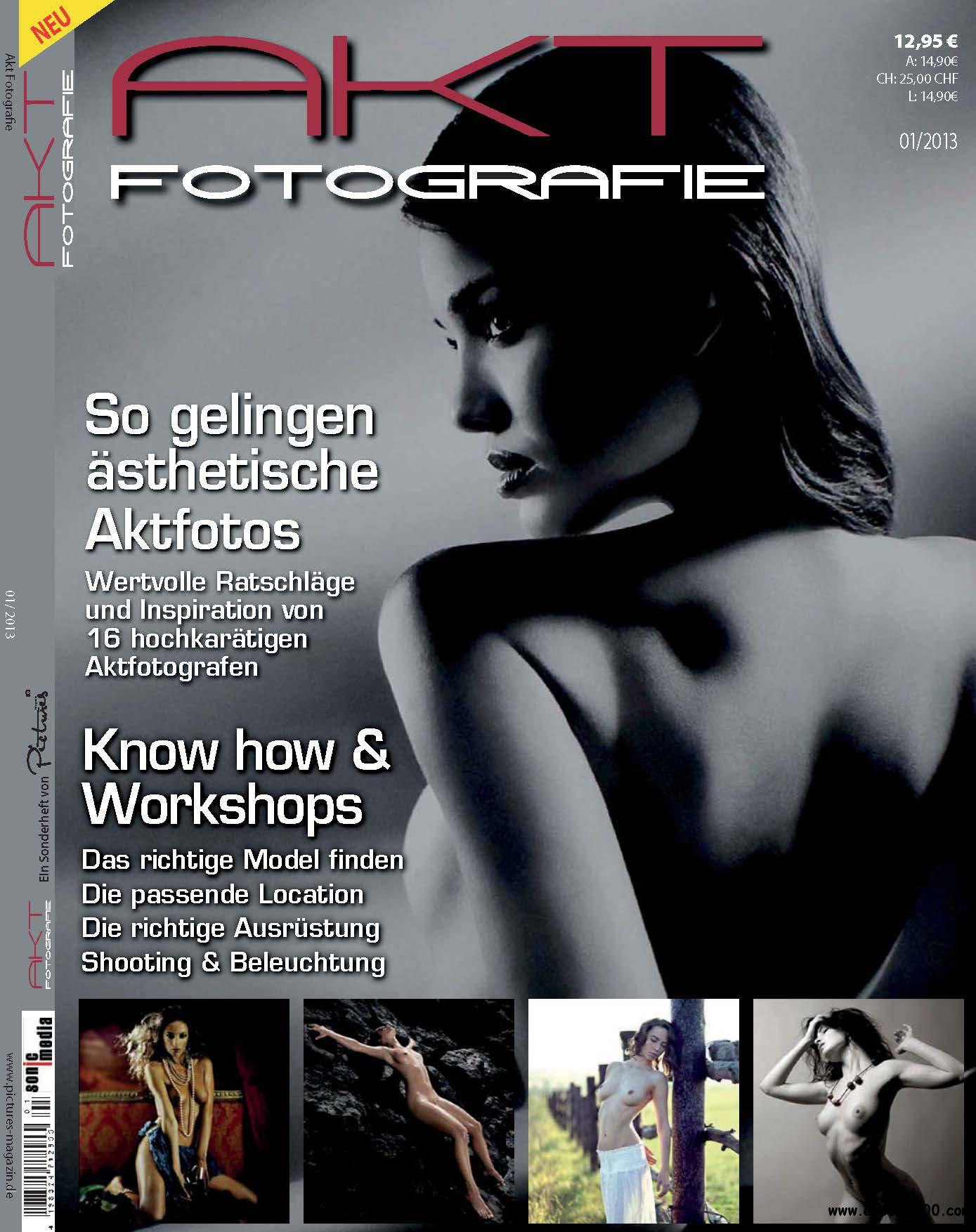 Pictures Magazin Sonderheft: Aktfotografie 01/2013 download dree