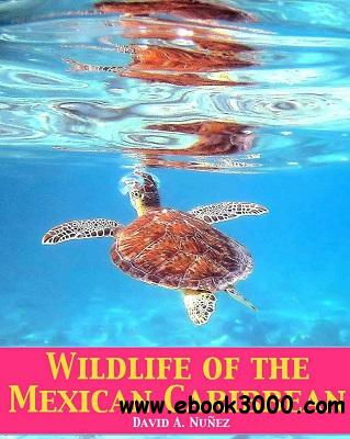 Wildlife of the Mexican Caribbean free download