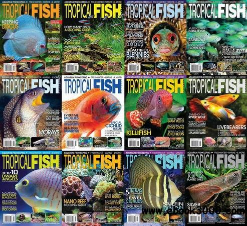 Tropical Fish Hobbyist Magazine 2013 Full Collection free download