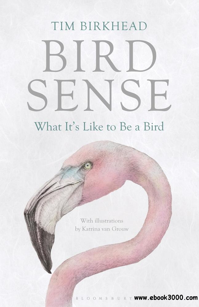 Bird Sense: What It's Like to Be a Bird free download