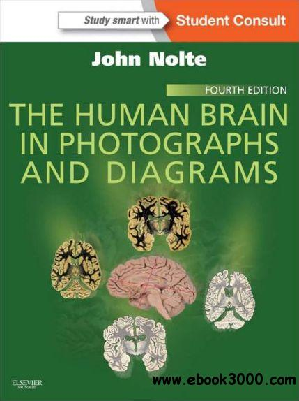 The Human Brain in Photographs and Diagrams: With Student Consult Online Access, 4th Edition free download