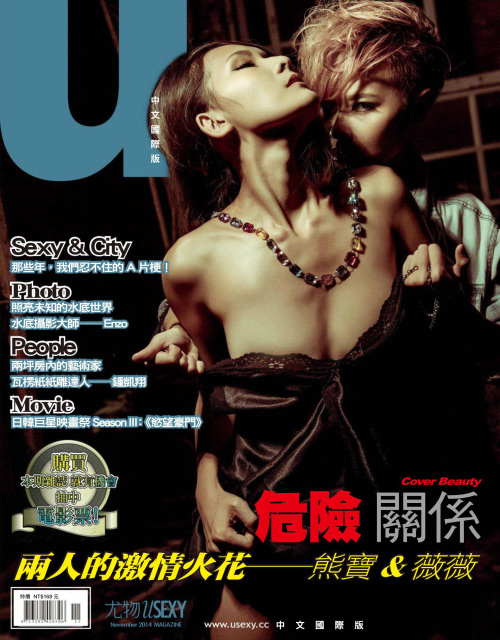 USEXY Taiwan - November 2014 free download