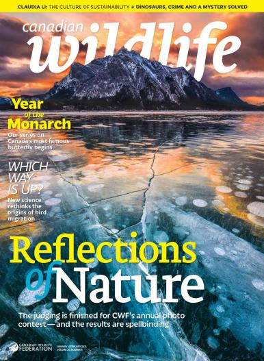 Canadian Wildlife - January/February 2015 free download