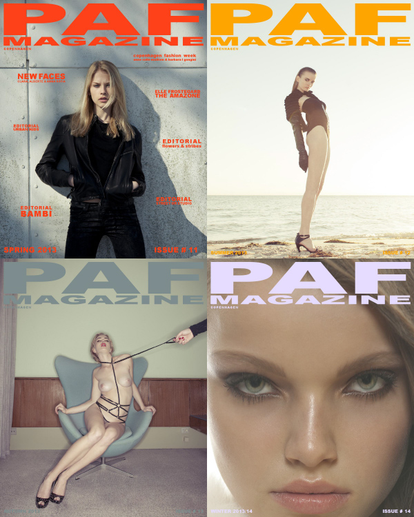 PAF Magazine 2013 Full Year Collection free download