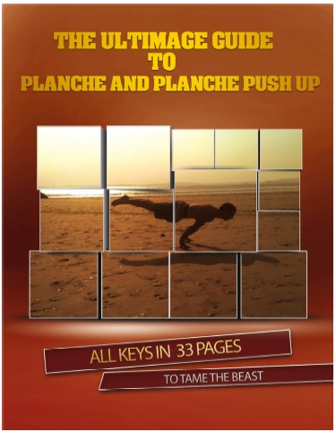 The Ultimate Guide to Planche and Planche Push-Up free download