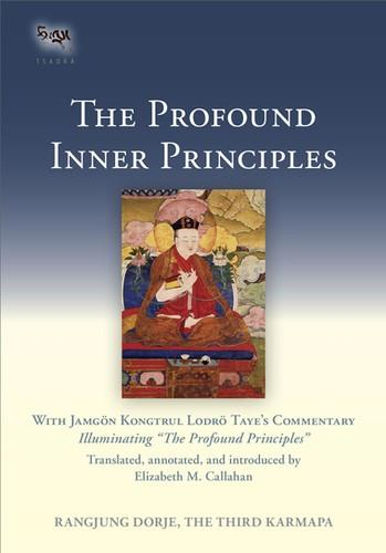Profound Inner Principles: With Jamgon Kongtrul Lodro Taye's Commentary free download