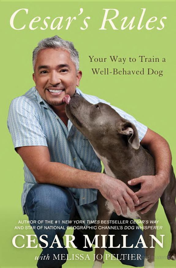 Cesar's Rules: Your Way to Train a Well-Behaved Dog free download