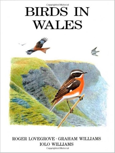 Birds in Wales free download