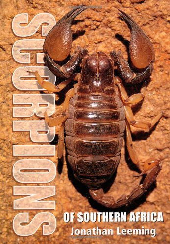 Scorpions of Southern Africa free download