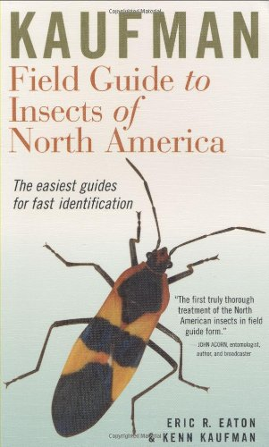 Kaufman Field Guide to Insects of North America free download