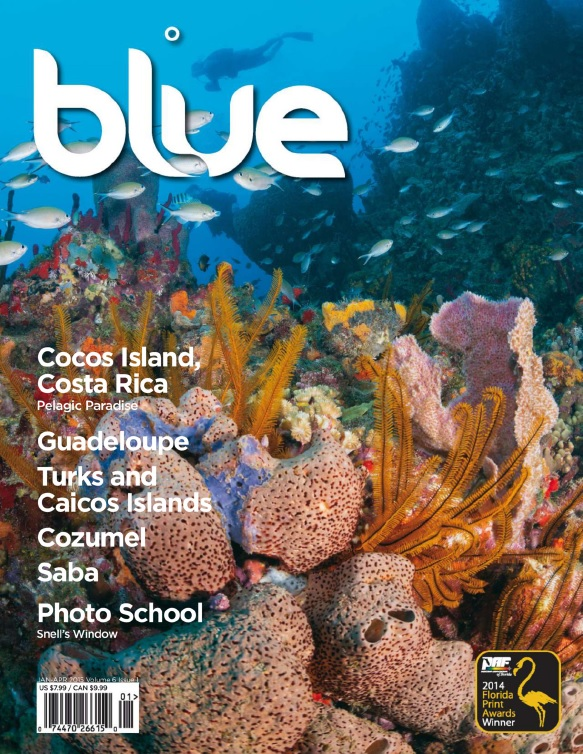 Blue Magazine - Volume 6 Issue 1, 2015 free download