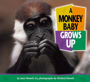 A Monkey Baby Grows Up download dree